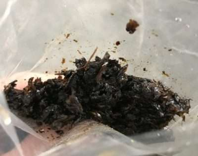 Табак Kismet